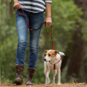 Maxima Ownat Prime Grain Free Junior pienso para perros jovenes