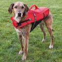 Nutribound complemento nutricional para Perros en recuperación