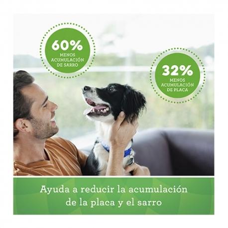 Hyaloral condroprotector para perros de razas pequeñas y medianas [2 formatos]