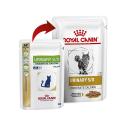 Restomyl Gel dental para perros y gatos